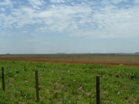 Divisa do Parque das Emas e a plantação demilho